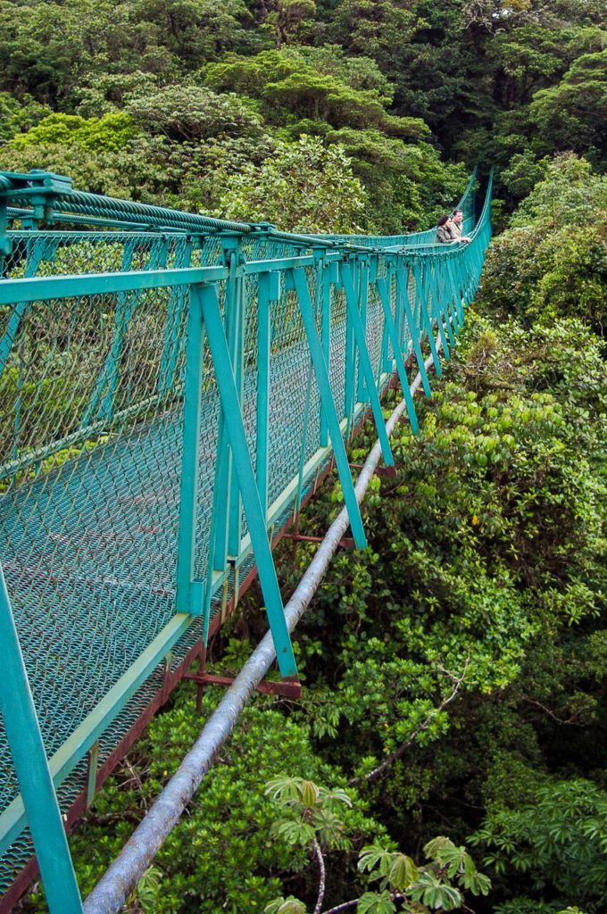 Monteverde-Hanging-Bridges