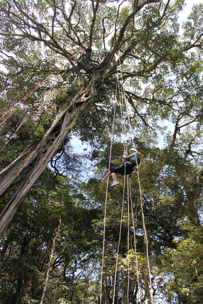 TreeTop Climbing-santa elena