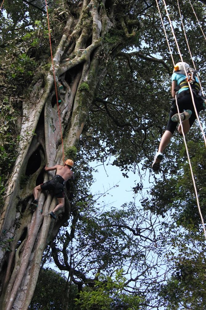 TreeTop Climbing-monteverde