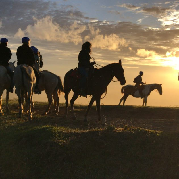 Monteverde Horseback Riding Tour