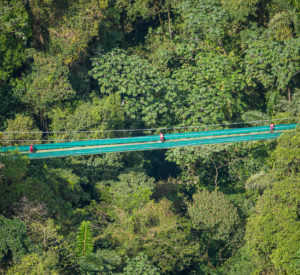 Monteverde Sky Walk & Hanging Bridges