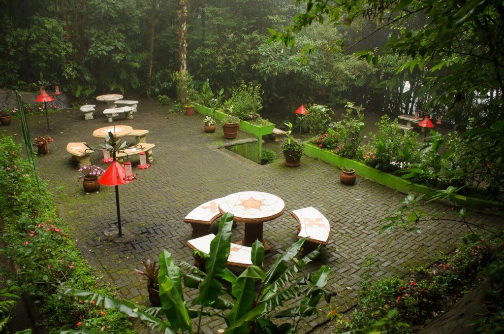 Monteverde Hummingbird Garden