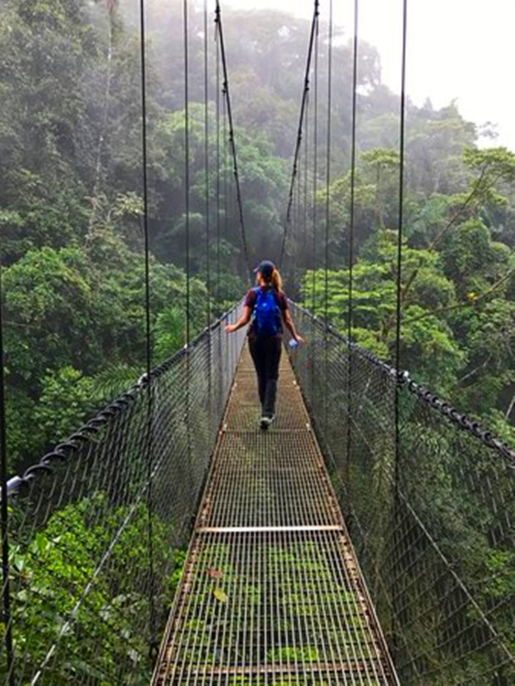 Arenal Volcano Hanging Bridges