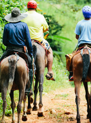 Manuel Antonio Horseback Riding Tour