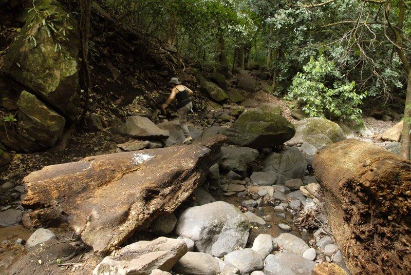 Rincon de La Vieja National Park Tour Costa Rica222222