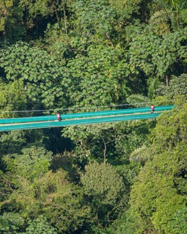 monteverde-sky-walk-adventure-2-1024×684