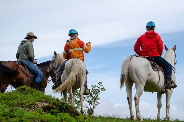 Horseback Riding Tour El Trigre Waterfall Monteverde