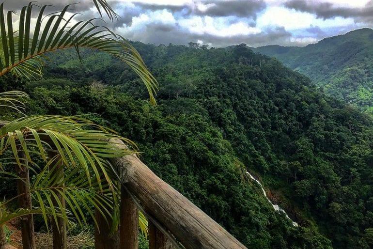 Carara Nationa Park tour from jaco beach Costa Ric