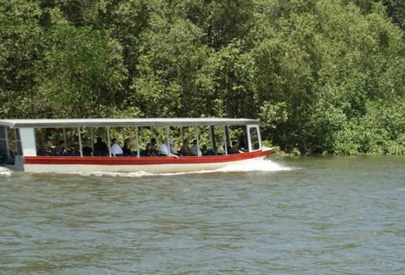 jaco Beach Cocodrile Man Tour Tarcoles River