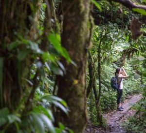 Monteverde Cloud Forest Tours & Things to do